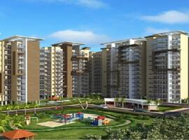 Osb Affordable Housing Sector 70 Gurgaon