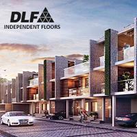DLF Floors Sector 92